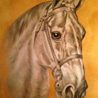 Cheval - huile sur toile pinceau 63x54 cm