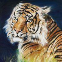 Tigre - huile sur toile couteau 60x60 cm